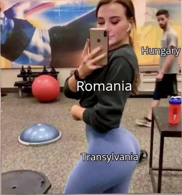 Le Translyvania - meme