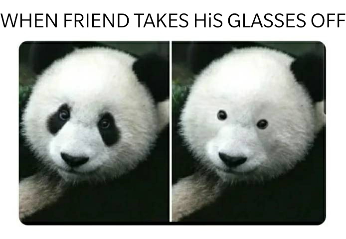 Insert friend - meme