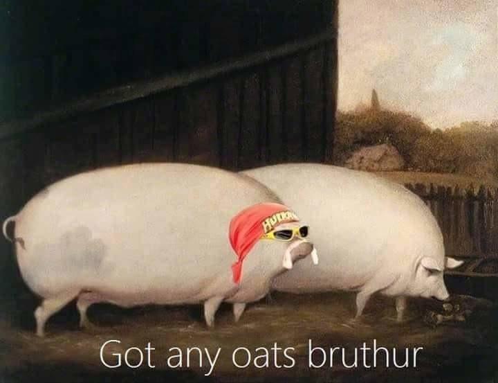 Bruthur - meme