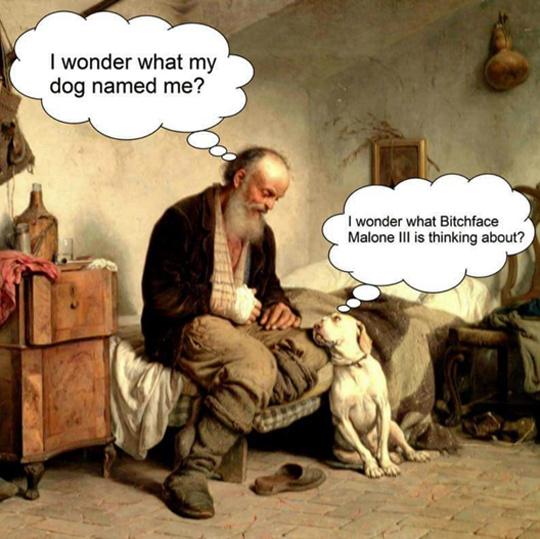 Dog probably named me Masturdebator - meme