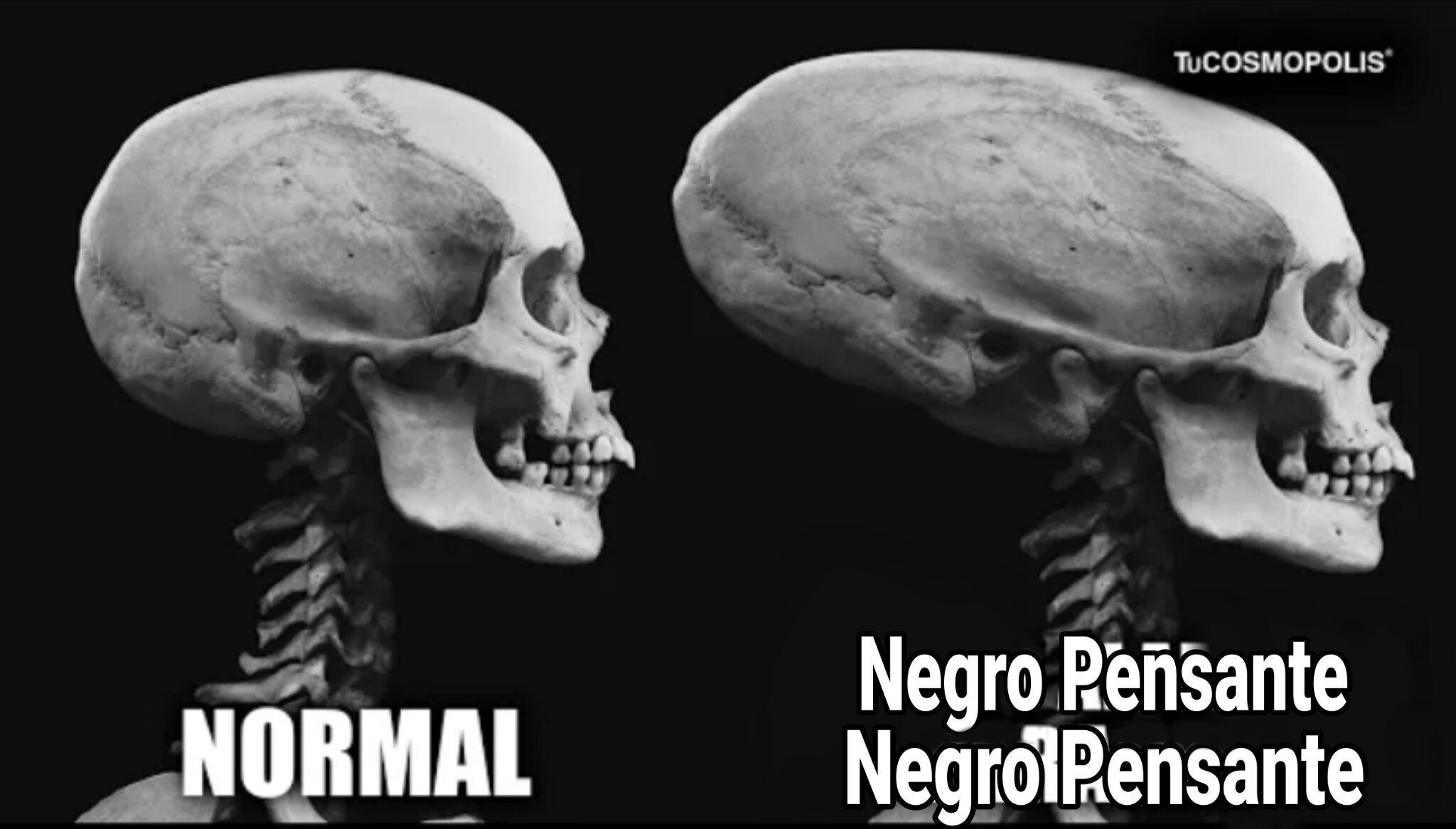 Negro Pensante - meme