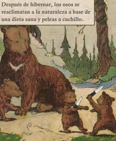 Como olvidar cuando el Brian adiestró a la manada de osos, y le enseño a usar navajas XD - meme