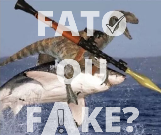 fato ou fake G1 be like - meme