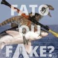 fato ou fake G1 be like