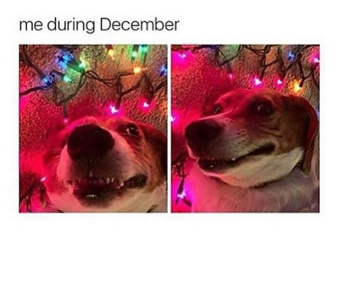 Me during whole December - meme