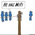 Il a la wifi !