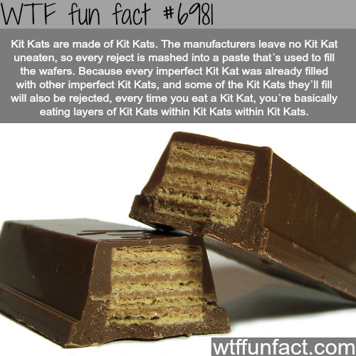 kit kats are made of kit kats - meme