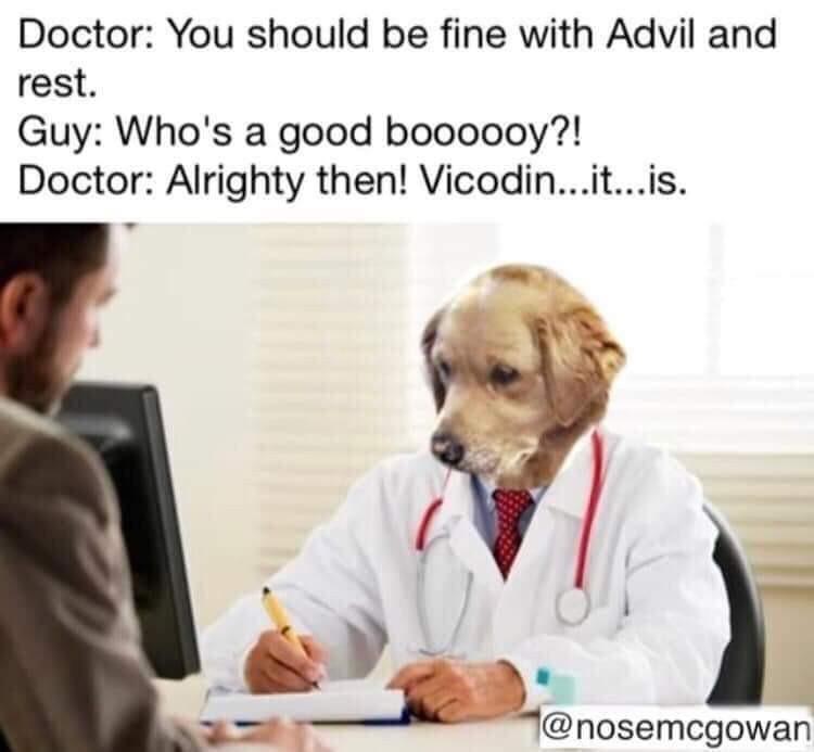 Good boy! - meme