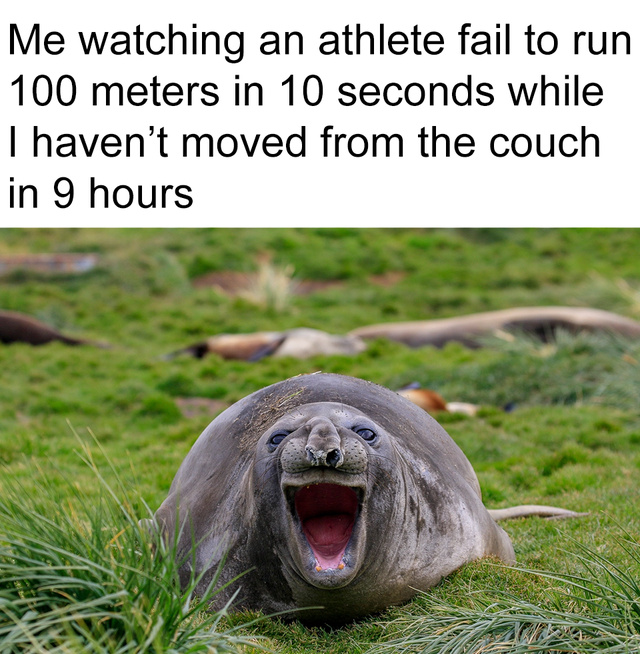 Me watching an athlete fail to run 100 meters in 10 seconds while I' have not moved from the couch in 9 hours - meme