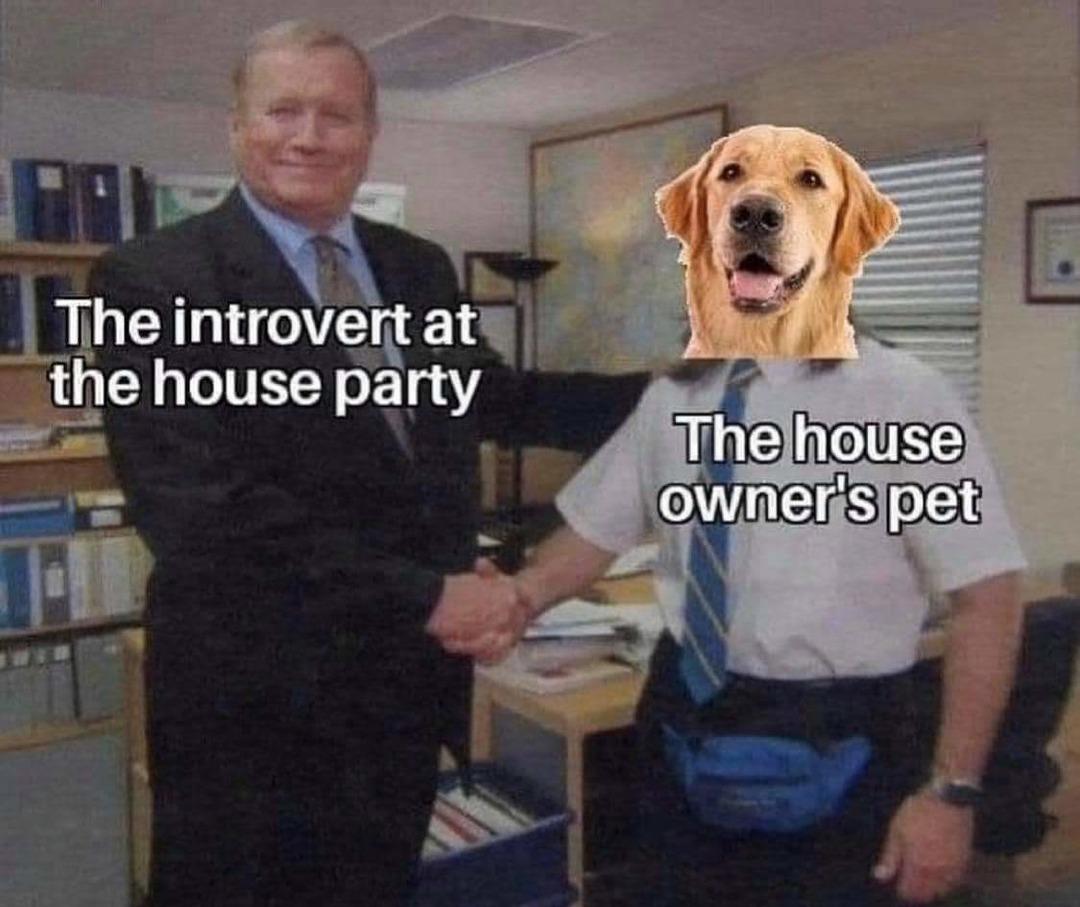Pet > guests - meme