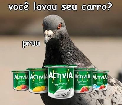 perolas dos Pombos PRUU3 - meme