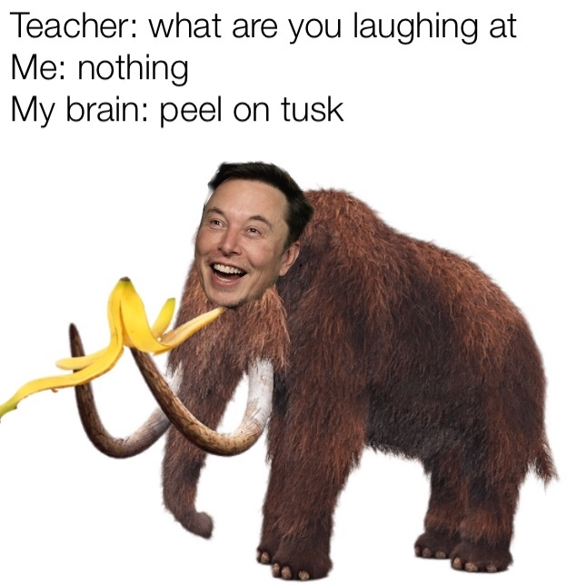 It sounds like Elon musk if you don't get it - meme