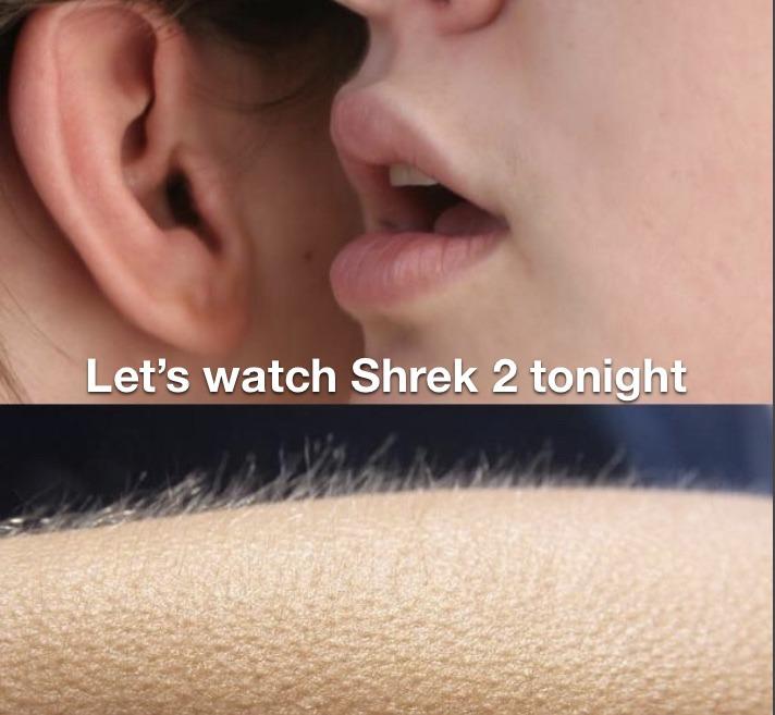 Shrek 2 - meme