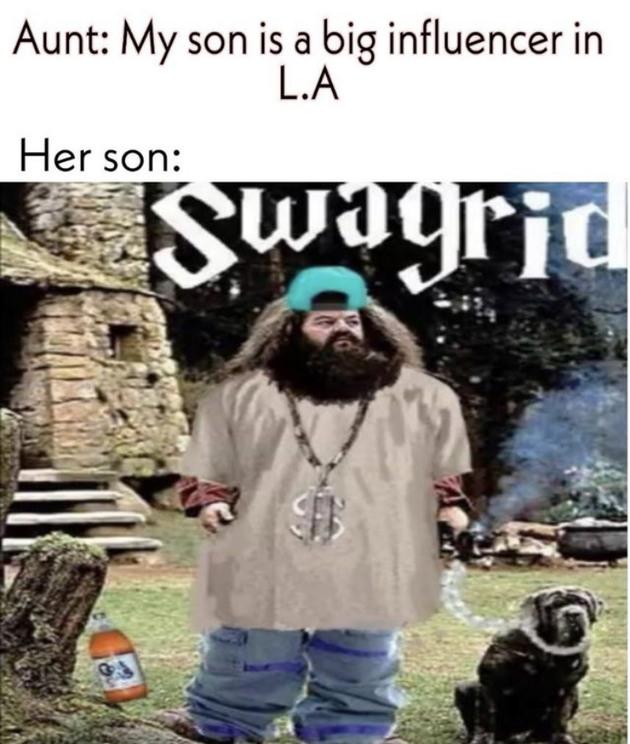 Swagrid - meme