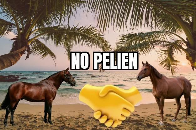 No pelien HD 2/3 - meme
