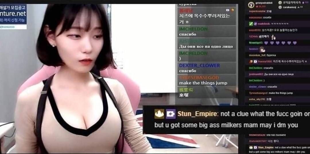 Twitch got ruined by ethots (dont @ me) - meme