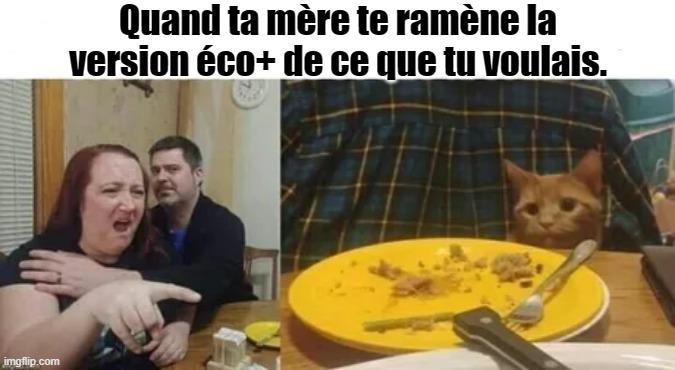 Eco+ - meme