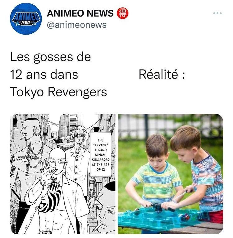 TOMAN - meme