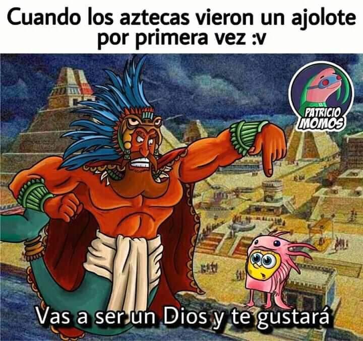 Aztec axolot - meme