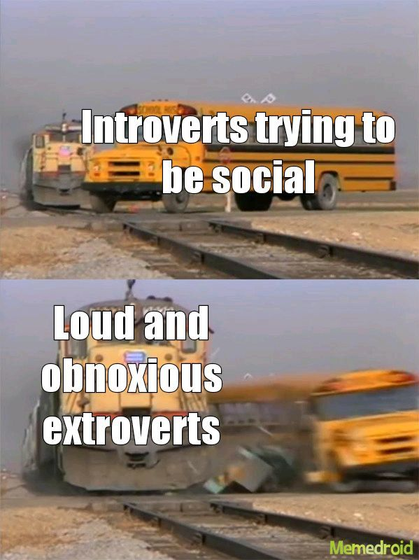 Slow and steady extroverts - meme