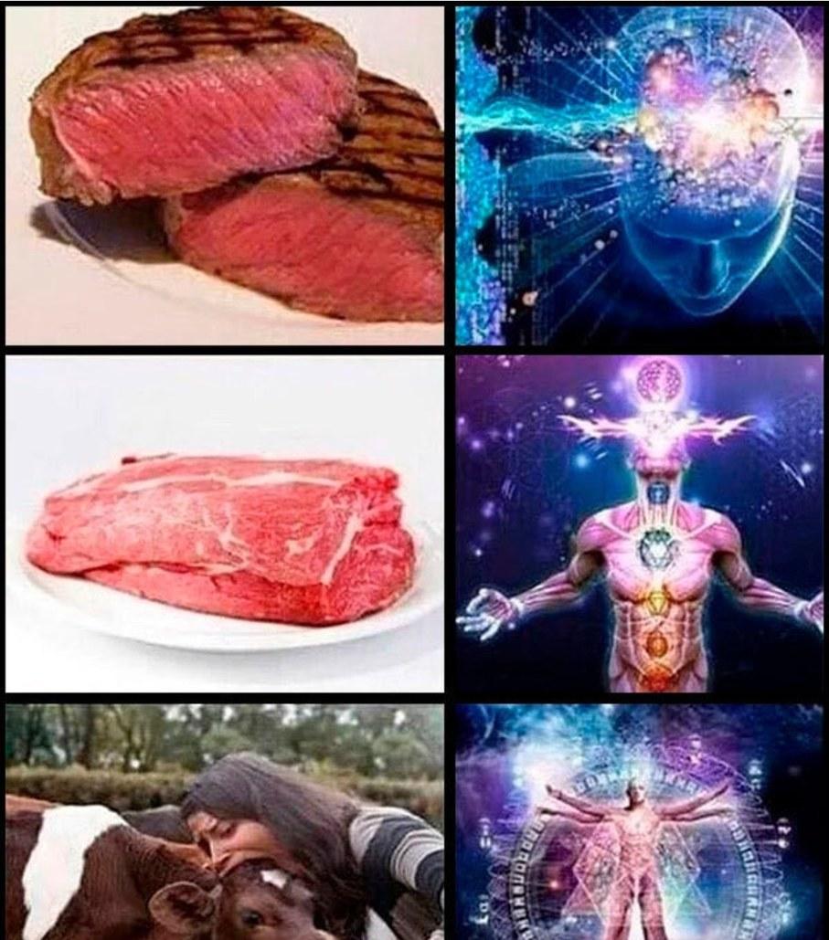 Debug san é vegano - meme
