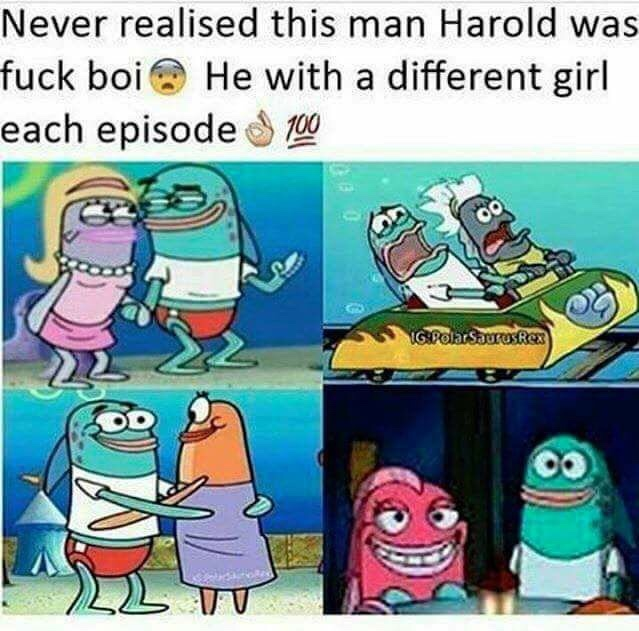 my boi Harold getting some - meme