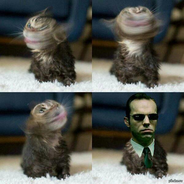 Mr Anderson - meme