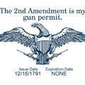 SHALL. NOT. BE. INFRINGED!