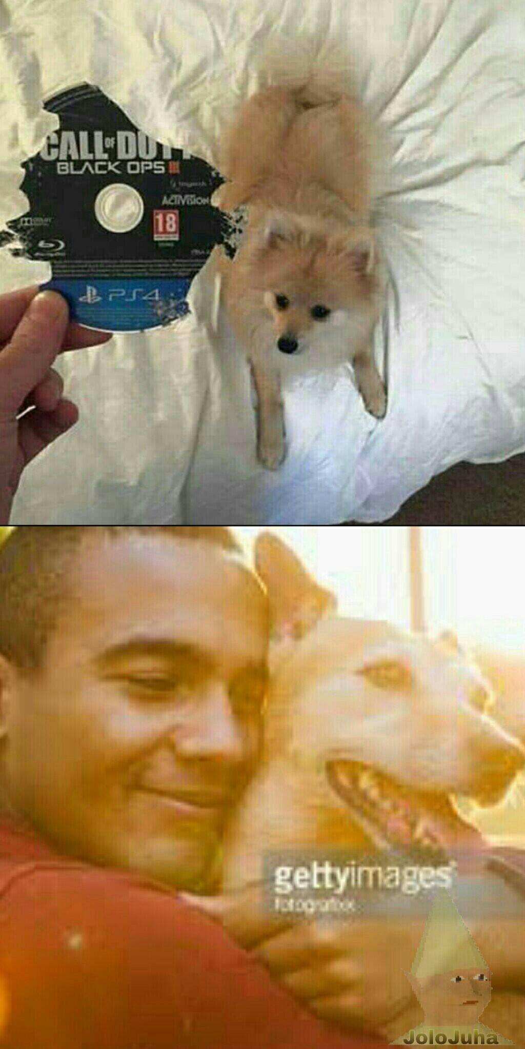 Merci mon chien ! ^^ - meme