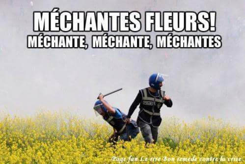 Michante - meme