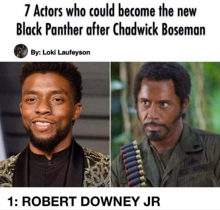 Tony Stark as T'challa - meme