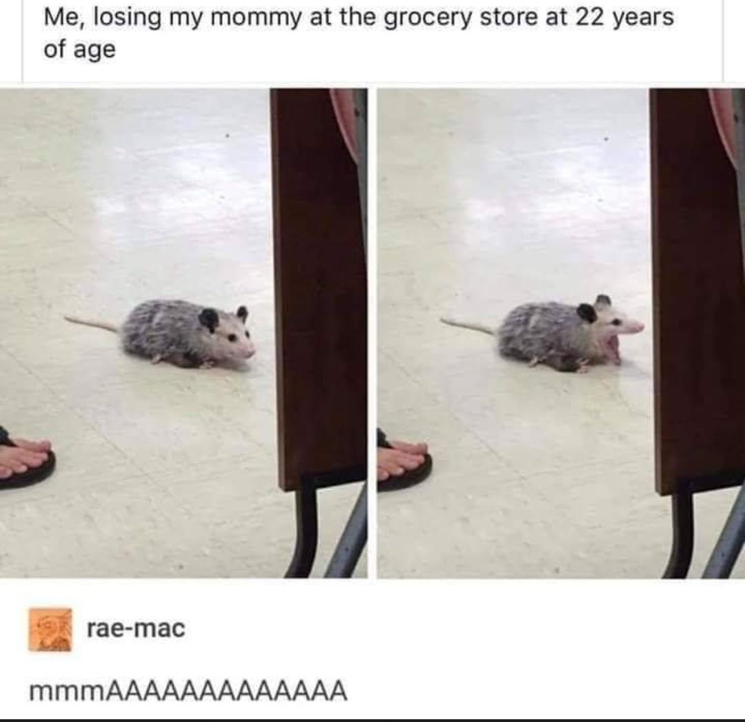 Mooooooooom - meme