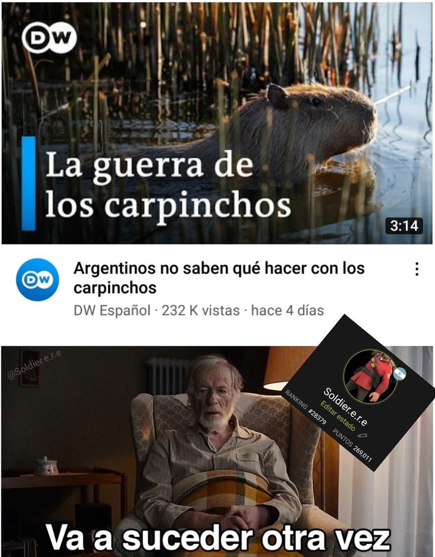 Carpincho 89 triste :c - meme