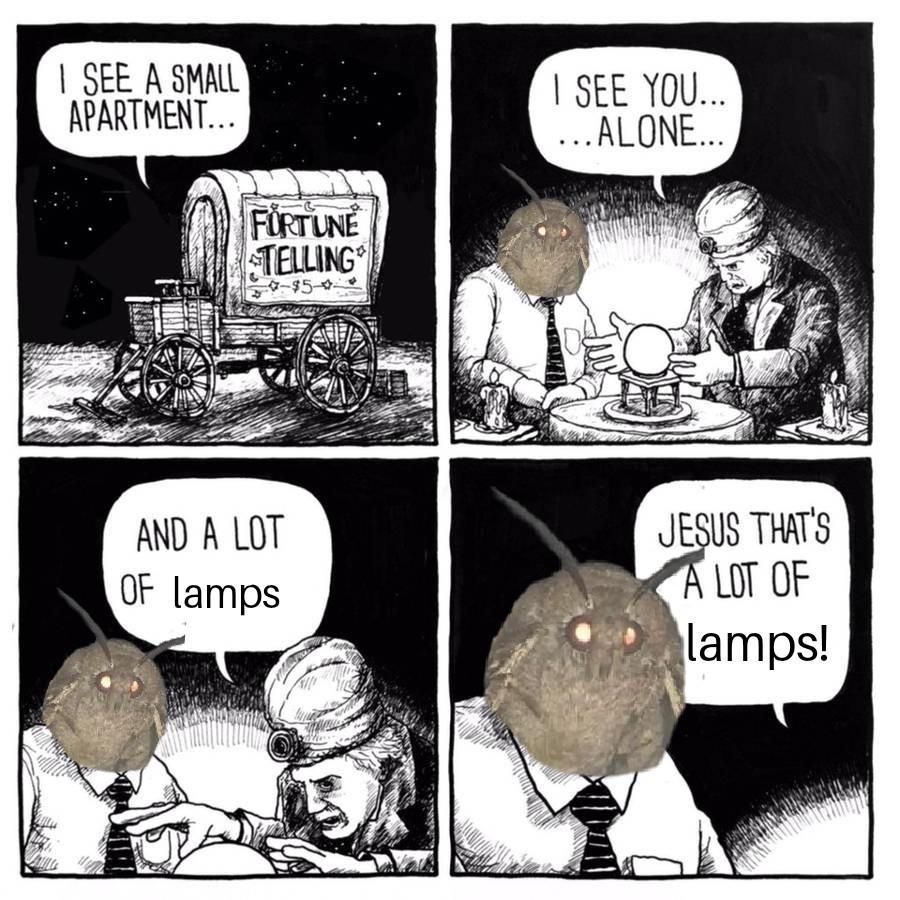 Fortune favours the moth - meme