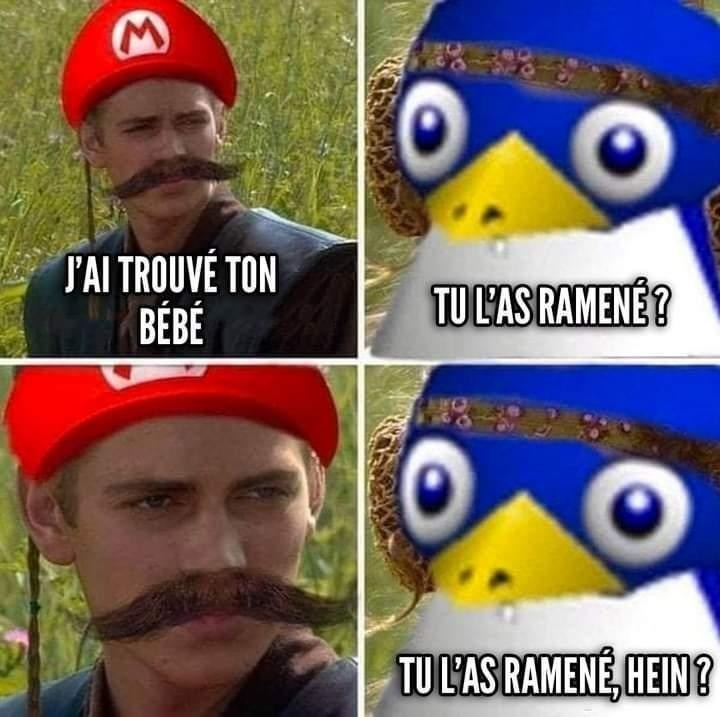 Pingouin dis-tu ? - meme
