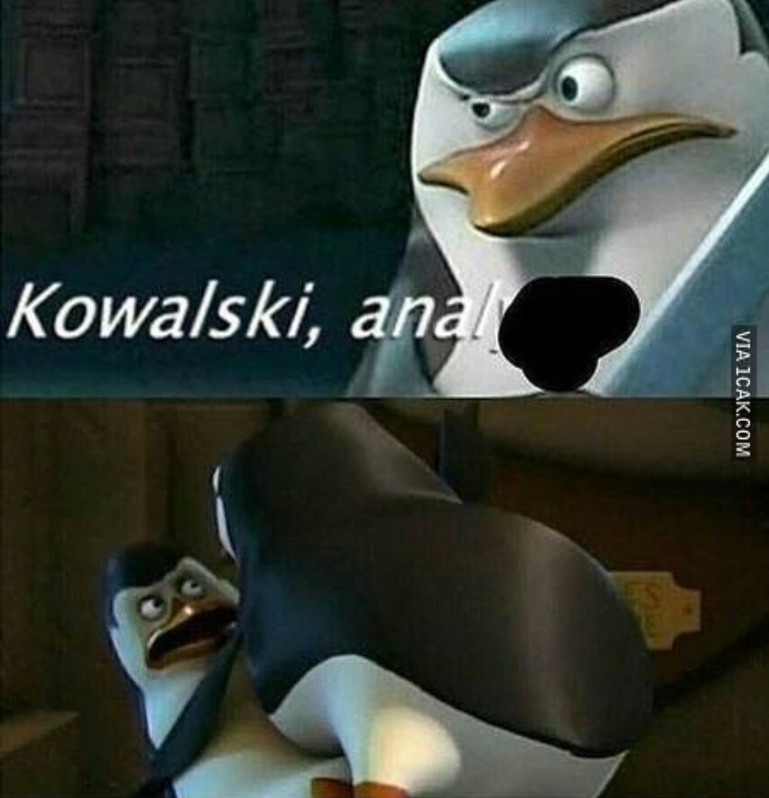 The best penguins of madagascar memes :) Memedroid