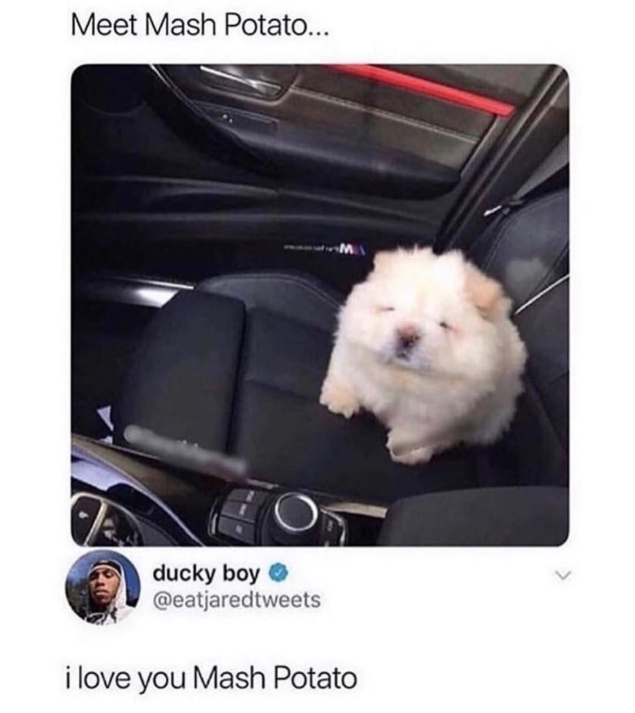 Say hi to mash potato - meme