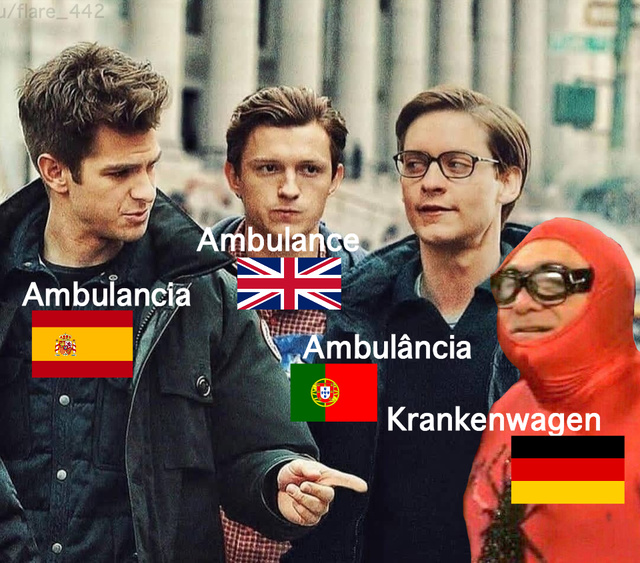 Why can't you be normal, German? - meme