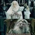 Vous connaissait la théorie disant que Ron c'est dumbeldor et Gandalf