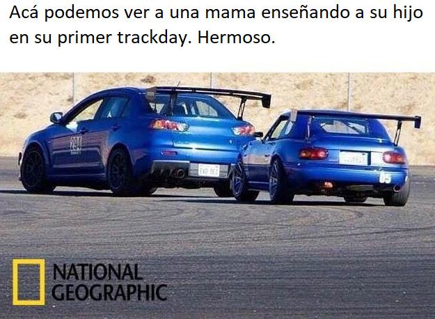 Me pregunto como los coches tendran hijos.... - meme
