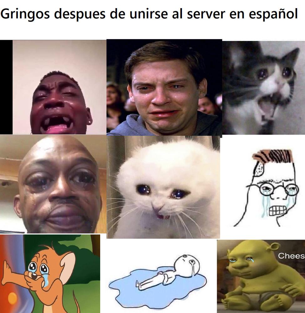 server - meme