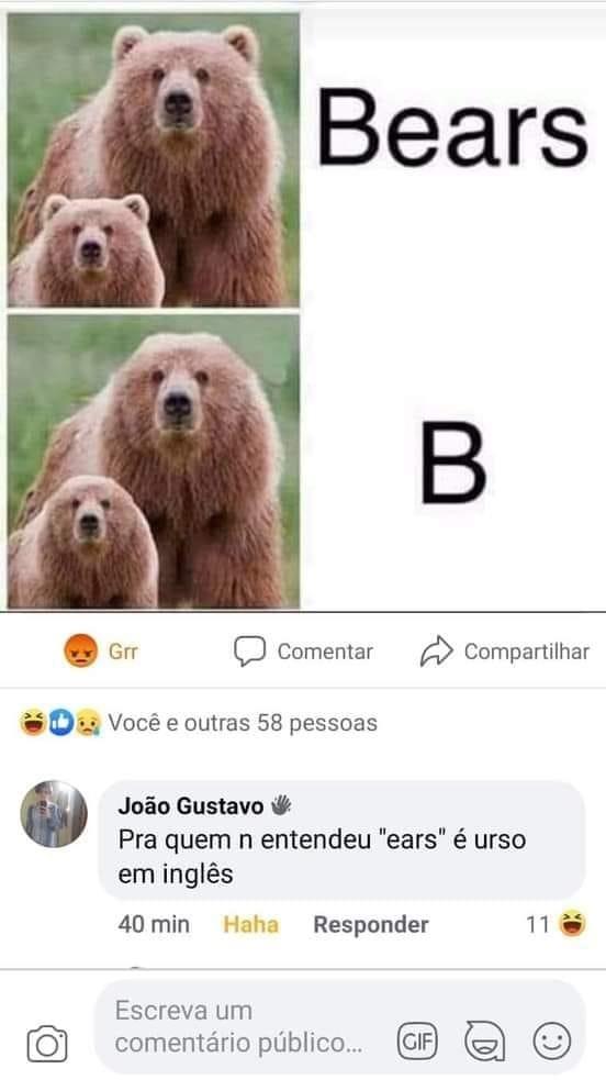 Urso em inglês - meme