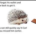 Carl is back