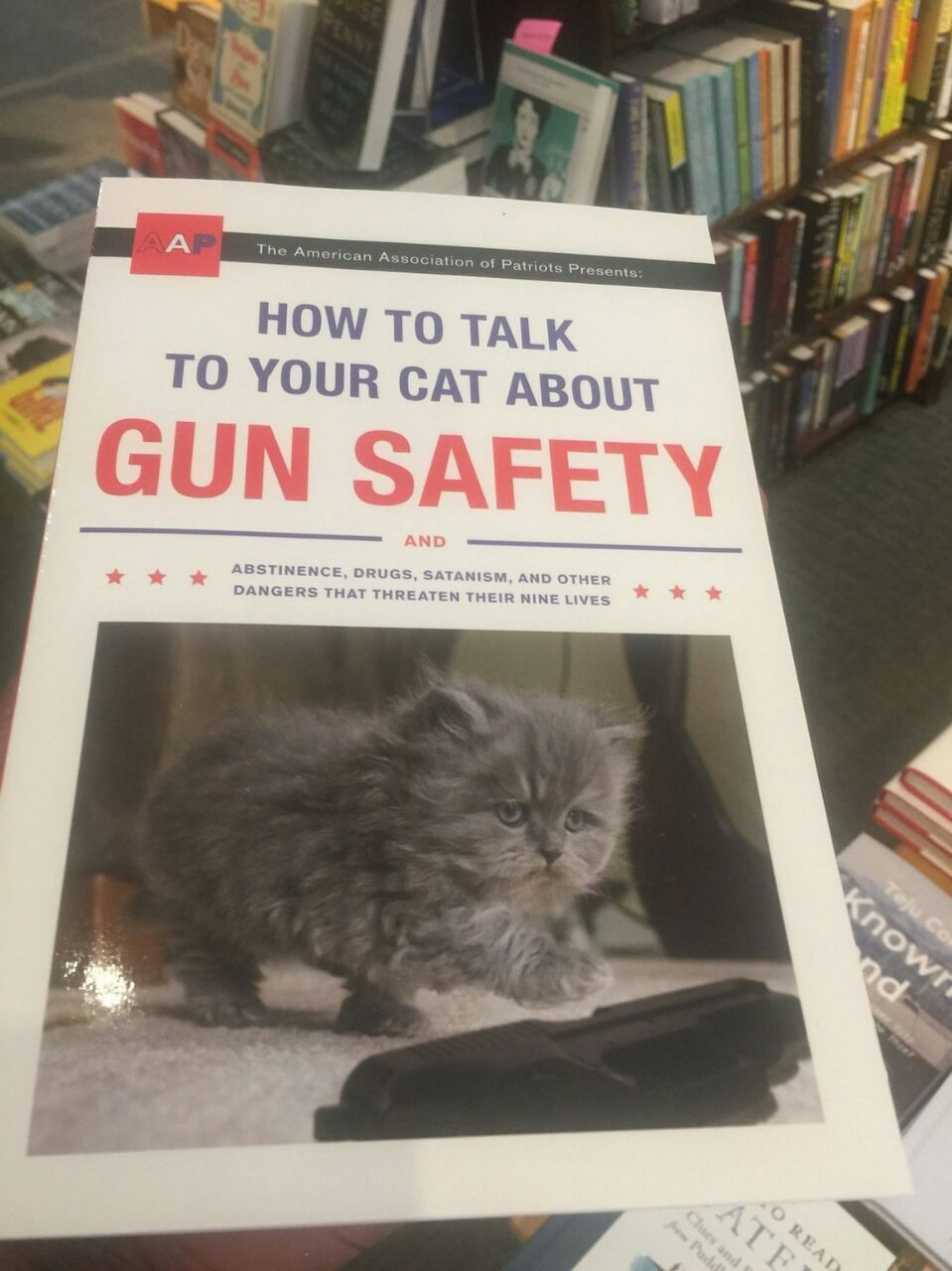 How to talk to your cat about gun safety uk
