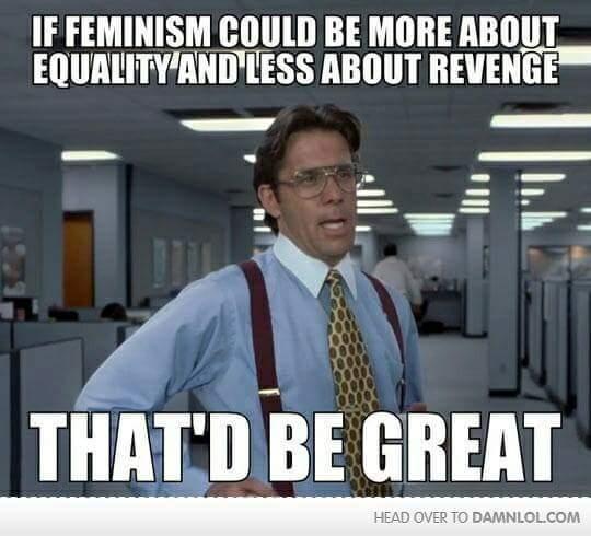 Those damn feminazis - meme