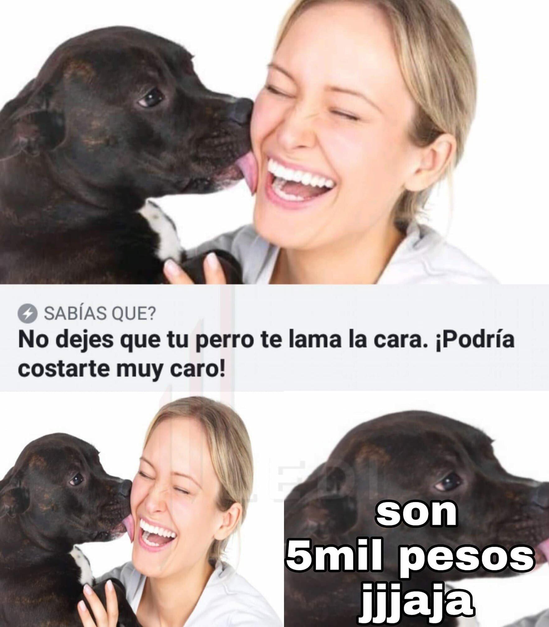 Pesos argentinos - meme