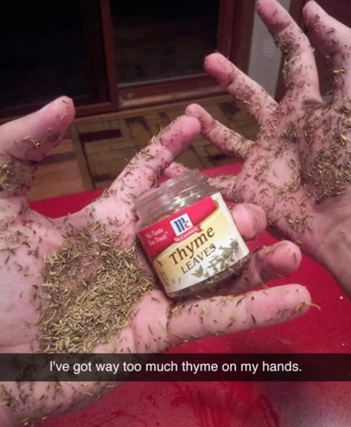 Too much Thyme.. - meme