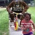 Run B*tch Run!