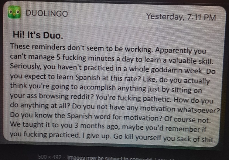 Duolingo texted me - meme