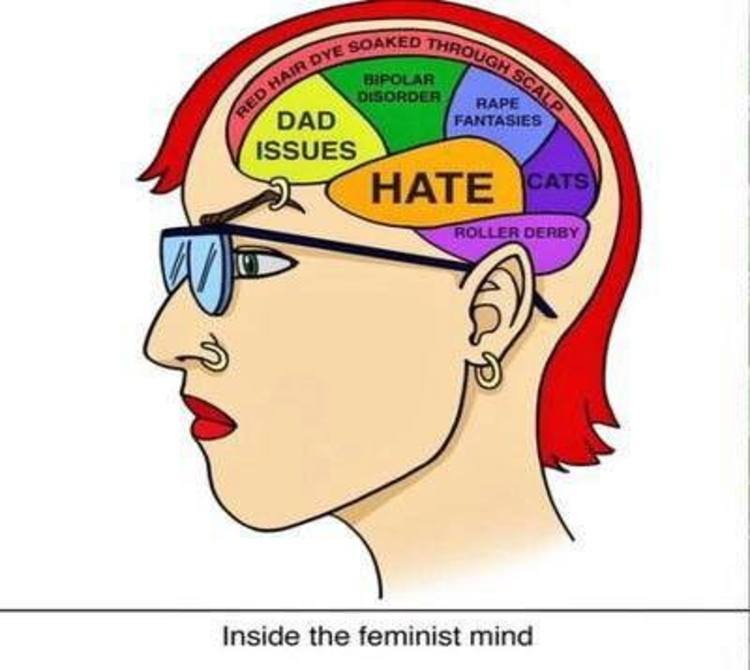 The Small Brains of Feminists! - meme